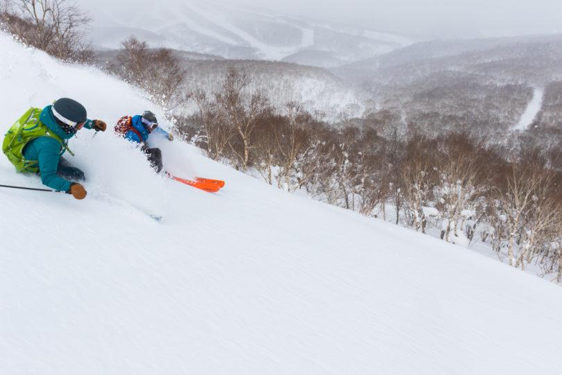 Powder Guiding Skiing Lr 5