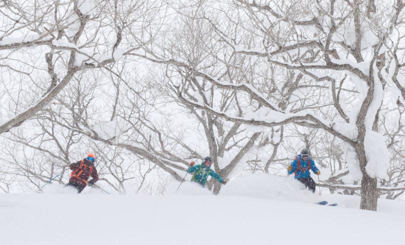Powder Guiding Skiing Lr 8